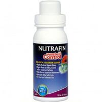 Antialgas para Acuarios
