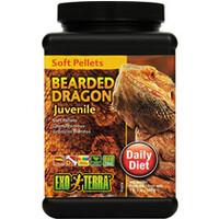 Alimento para Reptiles