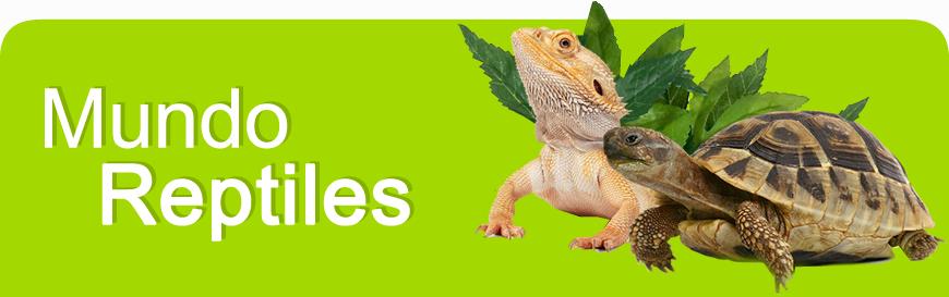 mundo_reptiles_banner.jpg
