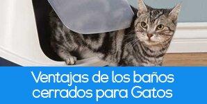 Ventajas de los areneros cerrados para gatos