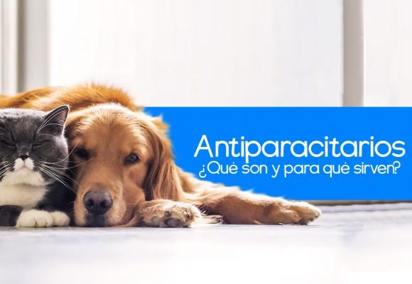 Los Antiparasitarios para Perros y Gatos