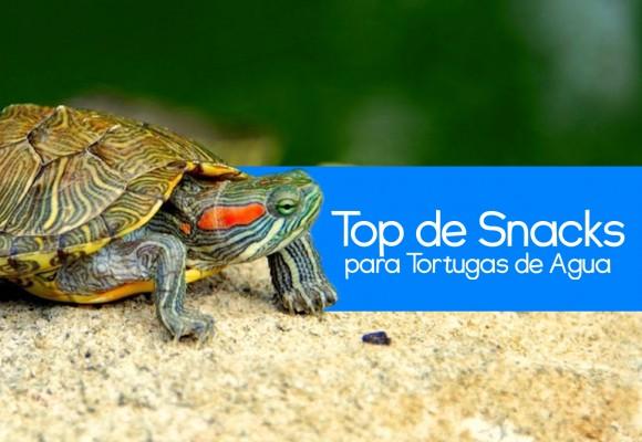 Top 5 de Snack para Tortugas de Agua